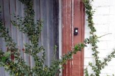 Front doorbell