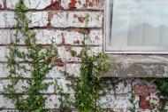 Farmhouse exterior detail