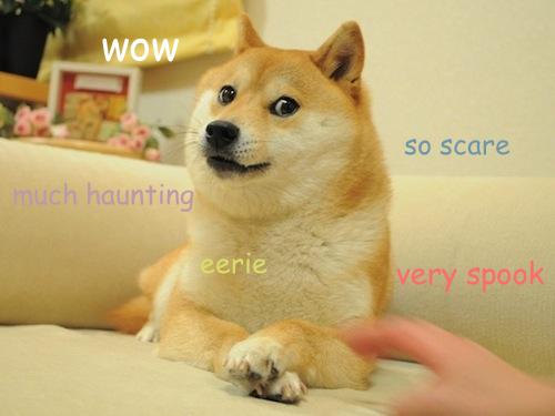 doge-eerie-haunting-spook