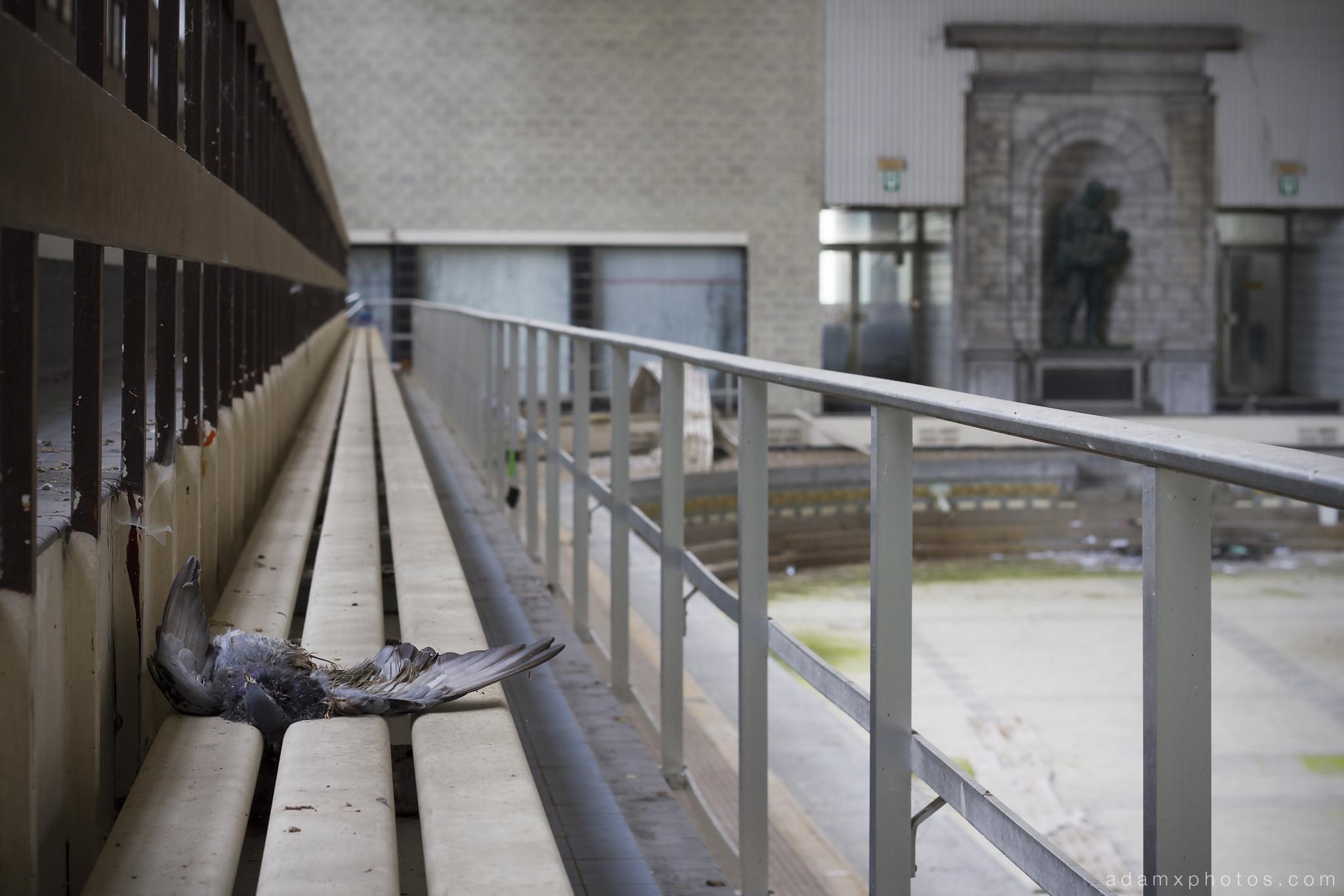 Explore 102 piscine crachoir belgium september 2014 for Brussels piscine