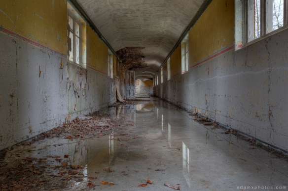 Corridor rain puddles reflections overgrown Severalls Mental Asylum Hospital Sevs Colchester Adam X Urban Exploration photo photos report decay detail UE abandoned derelict unused empty disused decay decayed decaying grimy grime