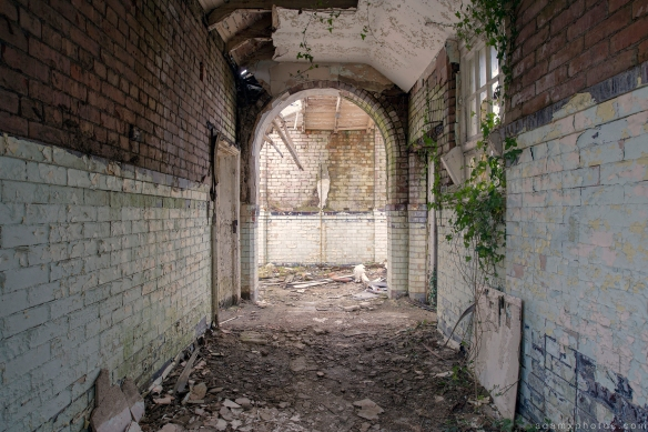 Corridor ivy Denbigh Asylum Wales Urbex Urban exploration Adam X Urban Exploration Photo photos photographs UK March 2015 report abandoned disused derelict decay decayed