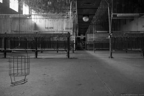 Schwarzkaue baskets chains details Baskets kaue Zeche M Zeche Heinz Mine Bergwerk Germany Deutschland Urbex Adam X Urban Exploration Access 2016 Abandoned decay lost forgotten derelict